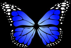 butterfly-blue-gradiant