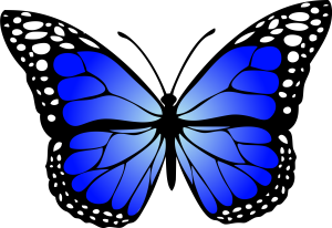 butterfly-blue-gradiant