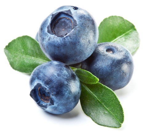 blueberries_84023236