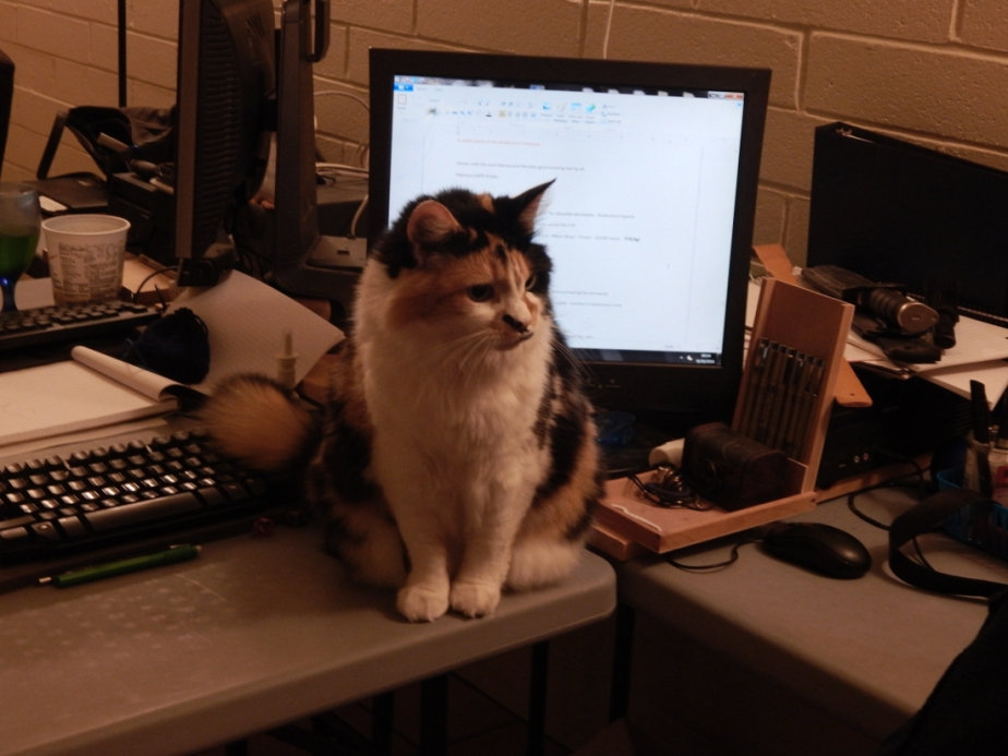 Guest Post: Tips for theCat-Owned