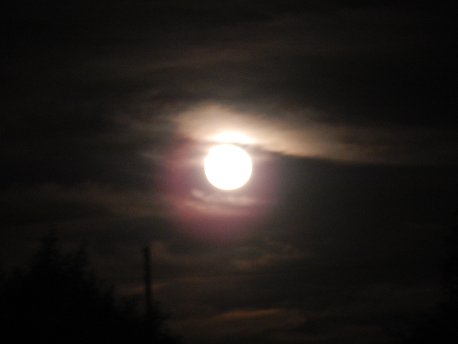 blurred moon 1