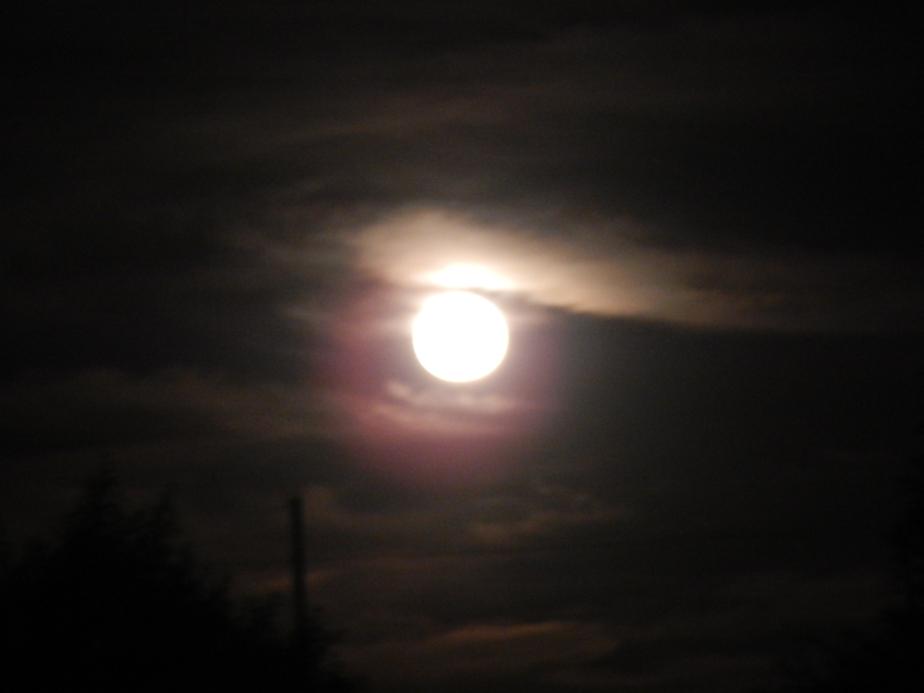 blurred moon 1.JPG
