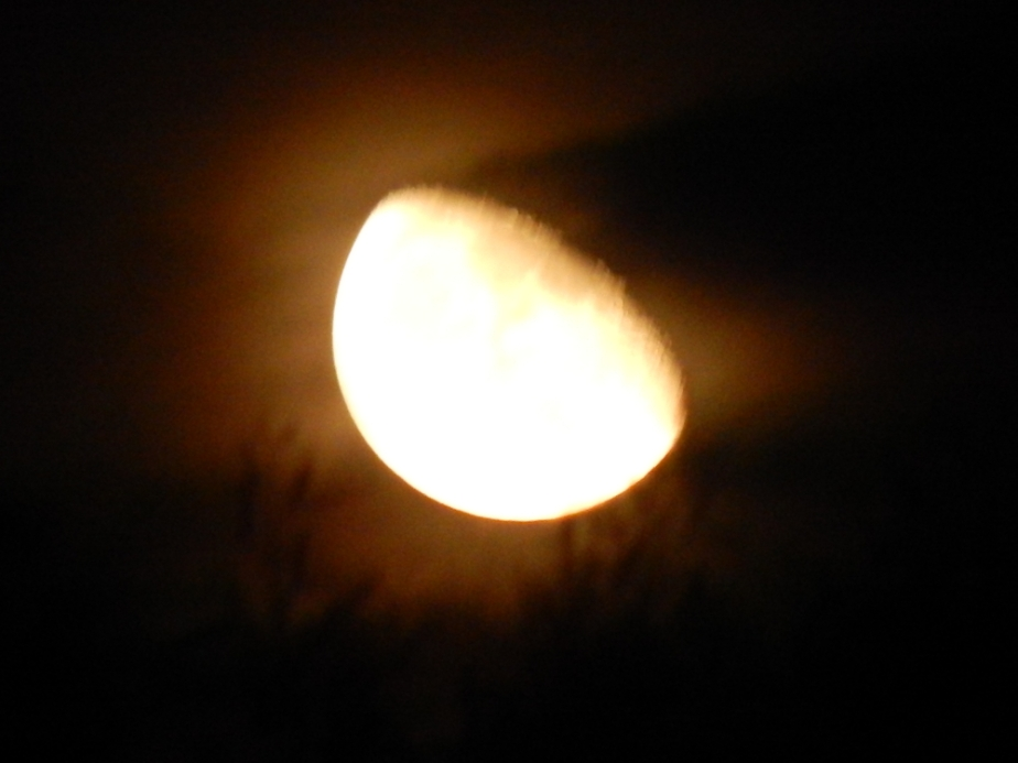 blurred moon 2.JPG