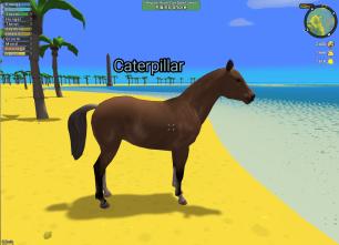 Example Horse