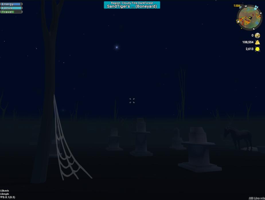 Boneyard at night