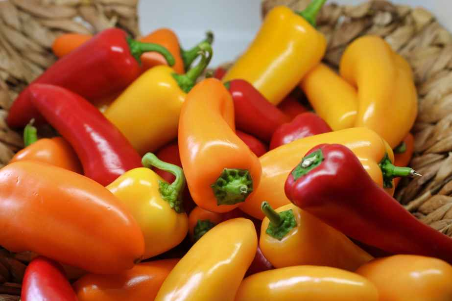 shallow focus photography of yellow and red bell peppers in basket