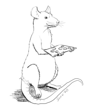rat1rshaw